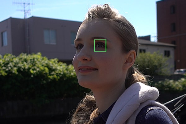 Real-time Eye AF with excellent tracking performance