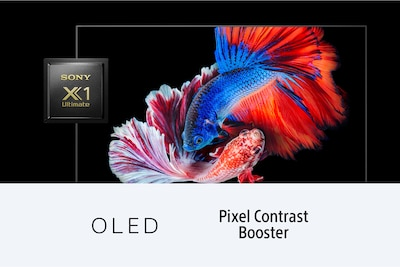 Fish showing OLED contrast