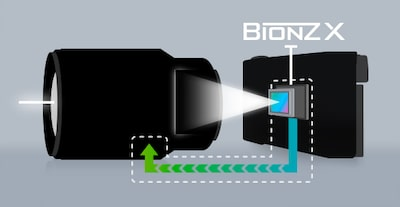 Illustration of autofocus system