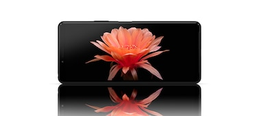 Striking image of flower on OLED display of Xperia 10 II