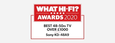 WHAT HI-FI 2020 best 48-50In award logo